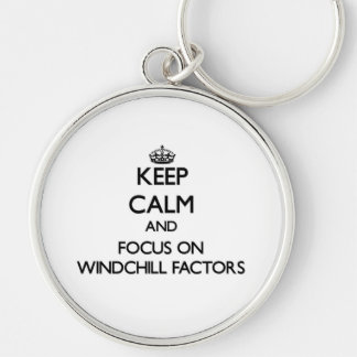 Keep Calm and focus on Windchill Factors Key Chain