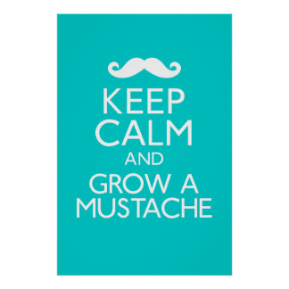 Keep Calm and Grow a Mustache Poster