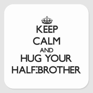 Keep Calm and Hug your Half-Brother Stickers