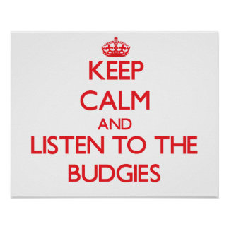 Keep calm and listen to the Budgies Poster