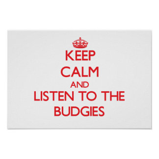 Keep calm and listen to the Budgies Print