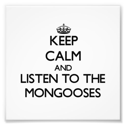 Keep calm and Listen to the Mongooses Photo Art