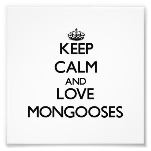 Keep calm and Love Mongooses Photo Art