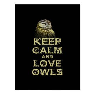 Keep Calm and Love Owls Original Owl Gift Stuff Postcard