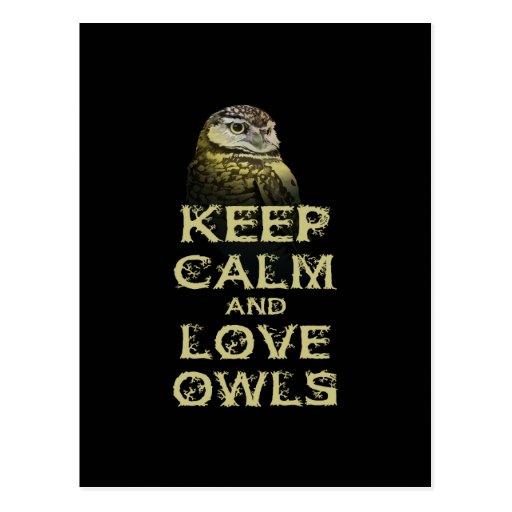 Keep Calm and Love Owls Original Owl Gift Stuff Postcards