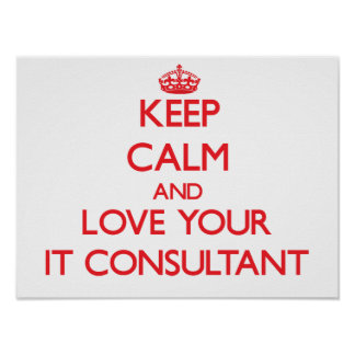 Keep Calm and Love your It Consultant Poster