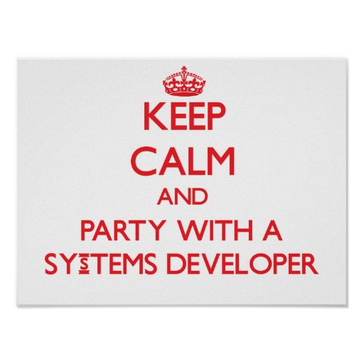 Keep Calm and Party With a Systems Developer Poster