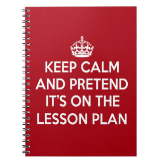 KEEP CALM AND PRETEND IT'S ON THE LESSON PLAN GIFT NOTE BOOK