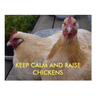 Keep Calm and Raise Chickens Postcard
