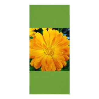 keep calm and read on, yellow daisy bookmark rack card template