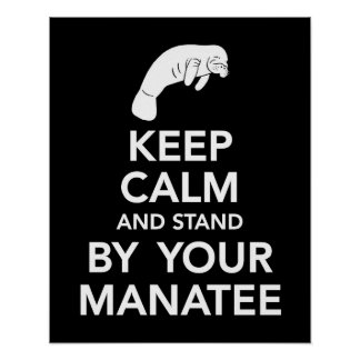 Keep Calm and Stand by your Manatee print