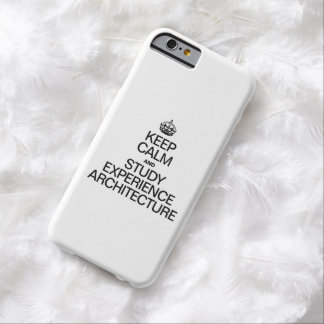KEEP CALM AND STUDY EXPERIENCE ARCHITECTURE BARELY THERE iPhone 6 CASE