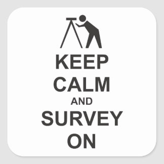 Keep Calm and Survey On Square Sticker