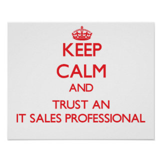 Keep Calm and Trust an It Sales Professional Poster