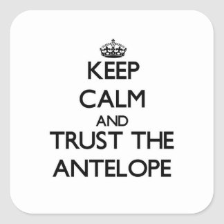 Keep calm and Trust the Antelope Square Sticker