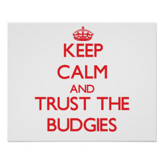 Keep calm and Trust the Budgies Poster
