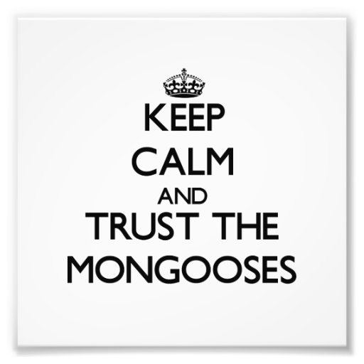 Keep calm and Trust the Mongooses Photographic Print