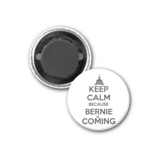 Keep Calm Because Bernie is Coming Magnet