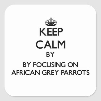 Keep calm by focusing on African Grey Parrots Square Sticker