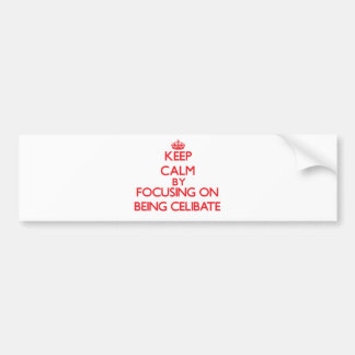 Keep Calm by focusing on Being Celibate Bumper Stickers