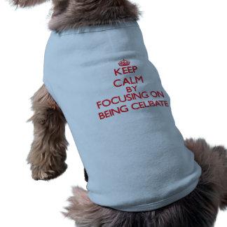 Keep Calm by focusing on Being Celibate Pet Tee