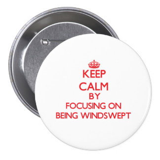 Keep Calm by focusing on Being Windswept Pinback Button