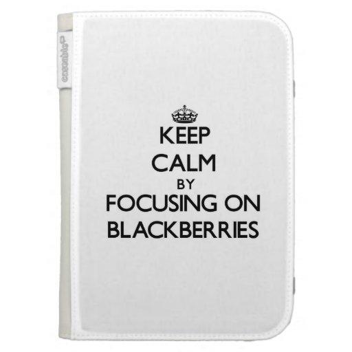 Keep Calm by focusing on Blackberries Kindle Keyboard Cases