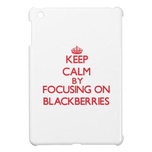 Keep Calm by focusing on Blackberries iPad Mini Covers