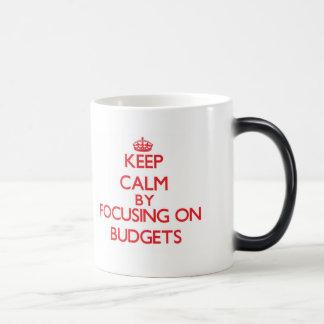 Keep Calm by focusing on Budgets Coffee Mugs