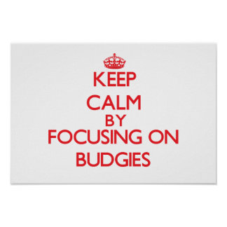 Keep calm by focusing on Budgies Print