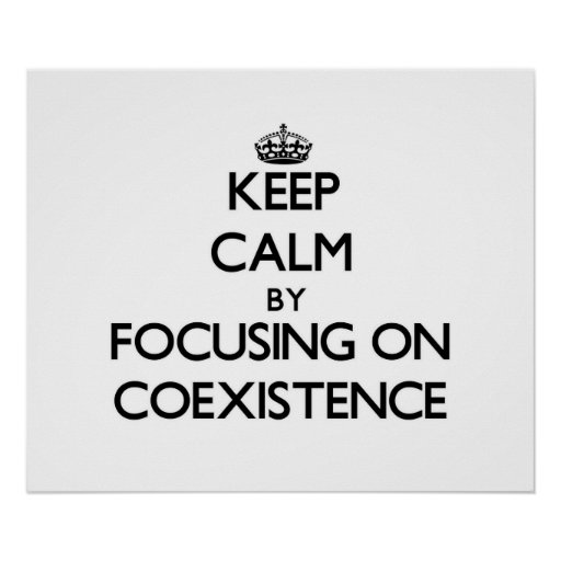 Keep Calm by focusing on Coexistence Poster