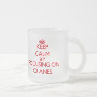 Keep Calm by focusing on Cranes Coffee Mugs