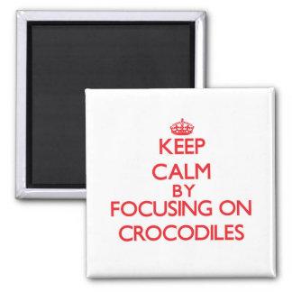 Keep Calm by focusing on Crocodiles Refrigerator Magnets