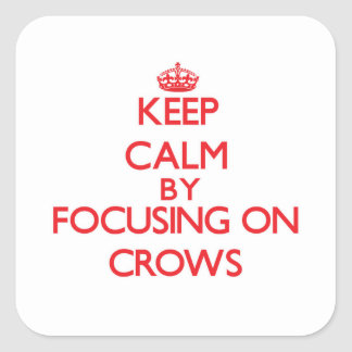 Keep Calm by focusing on Crows Square Sticker
