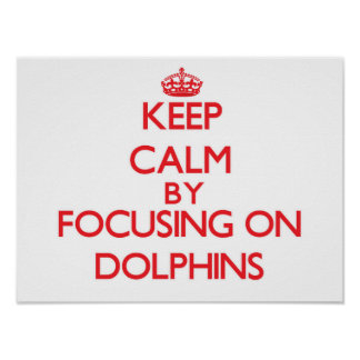 Keep Calm by focusing on Dolphins Poster