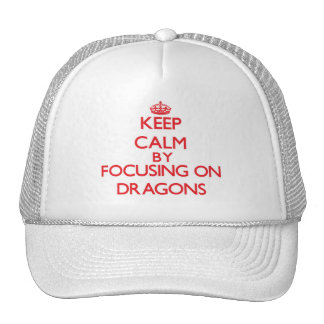 Keep Calm by focusing on Dragons Mesh Hats