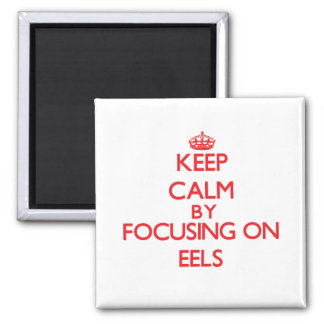 Keep Calm by focusing on EELS Refrigerator Magnet