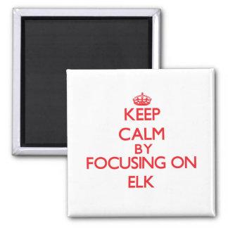 Keep Calm by focusing on ELK Fridge Magnets