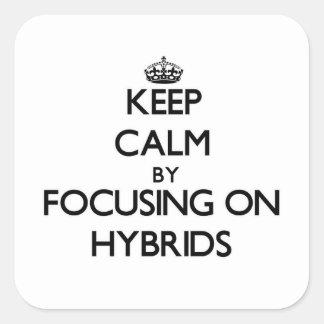 Keep Calm by focusing on Hybrids Sticker