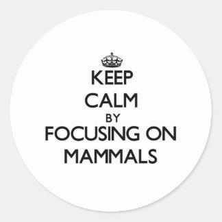 Keep Calm by focusing on Mammals Round Stickers