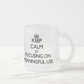 Keep Calm by focusing on Meaningful Use Mug