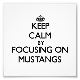 Keep Calm by focusing on Mustangs Photograph