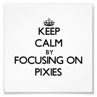 Keep Calm by focusing on Pixies Art Photo