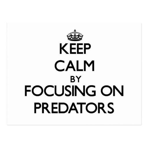 Keep Calm by focusing on Predators Post Cards