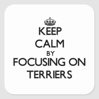 Keep Calm by focusing on Terriers Sticker