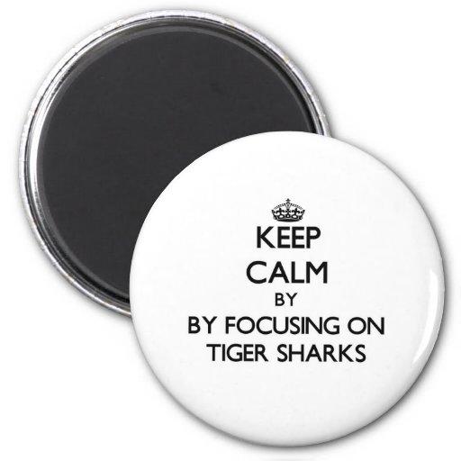 Keep calm by focusing on Tiger Sharks Fridge Magnet
