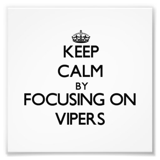 Keep Calm by focusing on Vipers Photo Print