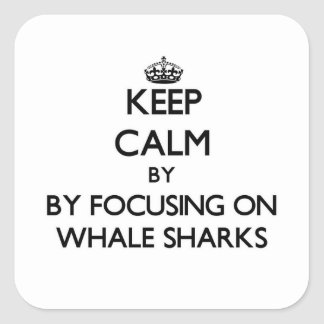 Keep calm by focusing on Whale Sharks Square Stickers
