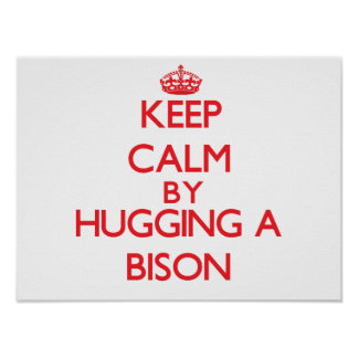 Keep calm by hugging a Bison Poster