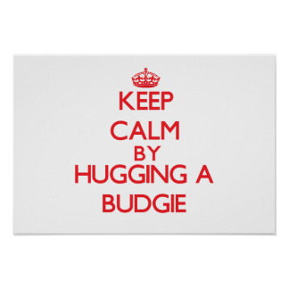 Keep calm by hugging a Budgie Posters